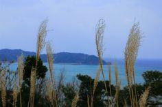 #sea #geopark #landscape