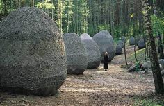 Magdalena Abakanowicz: Space of Unknown Growth