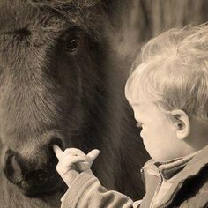 Kids and ponies. Admit it, we've all done this at one point or another. I STILL DO THIS!!! HAHA