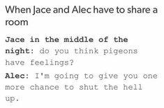 #funny #shadowhunters #tmi #Alec #Jace #parabatai #talk #pigeons #feelings