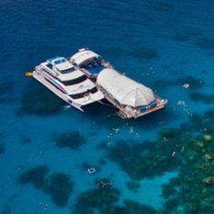 Visit Cairns - Great Barrier Reef Adventure