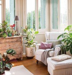 plants in pastel scheme