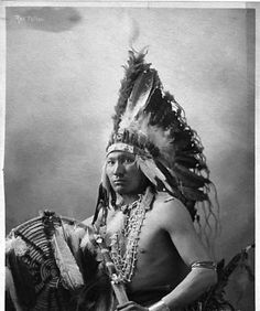 Portrait of Red Fellow (Omaha),wearing feather bonnet, bead necklaces, and armbands. He is holding a shield and possibly a knife sheath.