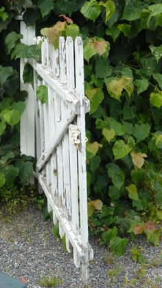 PICKET FENCE / Memory of Dads Picket Fence to the garden / ●•٠·˙✿ αɴɴe`ѕ ѕтory ✿˙·٠•●