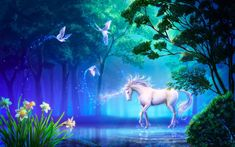 unicorn fairies mythical creatures unicorns wallpapers magic background backgrounds characters nature animated stuffpoint fantasy