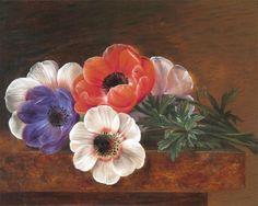 Gallery.ru / Фото #173 - Цветы - MontanaBY