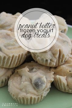 Dogs need a delightfully, pleasant treat during the summer time just as much as we do. Try out these yummy peanut butter frozen yogurt dog treats! by audrey