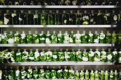 A totally wild floral arts store called Azuma Makoto Studio in Tokyo (26)