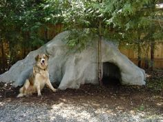 dog cave  wonder if I can make out of tires and cement