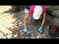 How to Remove Mildew and Mold from Paver Patio and Concrete Surfaces Cleaning Concrete Patios, Cleaning Pavers, Clean Concrete, Concrete Steps, Pressure Washer Tips, Pressure Washing, Clean Patio, Patio Steps, Garden Pavers