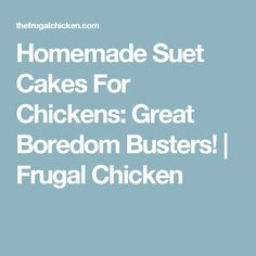 Homemade Suet Cakes For Chickens: Great Boredom Busters! | Frugal Chicken