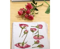 pressed rose petals crafts - Google Search