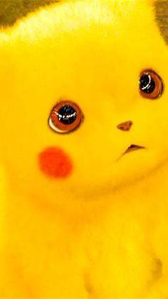 Pikachu Pikachu, Pikachu Kunst, Cute Cartoon Pictures, Cute Love Cartoons, Cartoon Pics, Cute Pokemon Wallpaper, Cute Disney Wallpaper, Cute Cartoon Wallpapers, Fotos Do Pokemon