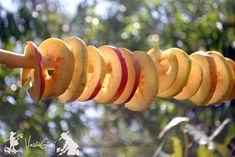 Cum se usuca merele pentru poame - magazinul de acasă