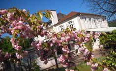 Le kirsch n'aura plus de secrets pour vous après avoir visité l'Ecomusée du Pays de la Cerise à Fougerolles, Franche-Comté. Pour plus d'info : http://fougerolles.pagesperso-orange.fr/ecomusee.html