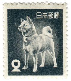 Japan postage stamp: akita dog,1953