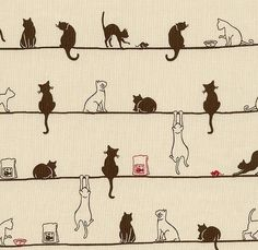 Cats on a line