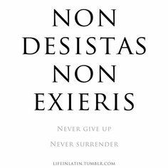 In Latin: Non Desistas Non Exieris || Never Give Up Never Surrender