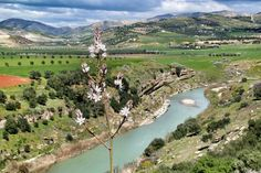 Oued Amlil..region of Taza...MOROCCO