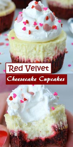 PERFECT red velvet cupcakes have a soft crumb, moist texture, hint of chocolate, and a gorgeous bright red color. Then they're topped with tangy cream cheese frosting for the best red velvet cupcake recipe. Homemade Cheesecake, Pumpkin Cheesecake, Cheesecake Recipes, Cupcake Recipes, Baking Recipes, Dessert Recipes, Christmas Cheesecake, Lemon Recipes, Gourmet Cupcakes