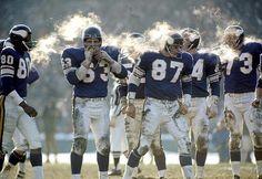 Minnesota Vikings: No stinkin' dome!