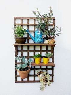 Wall Plant Holder, Plant Wall, Plant Holders, Plant Shelves Outdoor, Balcony Plants, Wall Racks, Yard Landscaping, Garden Pots, Diy And Crafts
