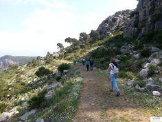Como fue... Pantano del Conde de Guadalhorce, 27 de abril 2013 'Caminando entre limones'   Senderismo para todos http://www.andalucianature.com/Walkingoverlemons.html