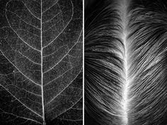 Artista mostra a beleza do corpo humano combinando-o com elementos da natureza