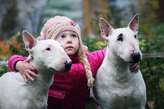 Little girl & Bullterriers by Sandra (Nikodema), via 500px