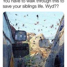 WYD? Funniest Hilarious Memes, Love Memes Funny, True Memes, Stupid Memes, Funny Relatable Memes, Funny Jokes, Memes Humor, Stupid Funny, Best Dad Jokes