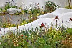 Fernando Gonzalez _ Garden Design > Portfolio > Chelsea Flower Show 15