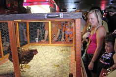 Austin, Texas - At Ginny's Little Longhorn Saloon, watching chickens make a mess of their coop is an extremely popular Sunday afternoon activity. Toronto Star, Good Music, Bingo, Sunday, Pretty, Parking Lot, Chicken, Austin Texas, Road Trips
