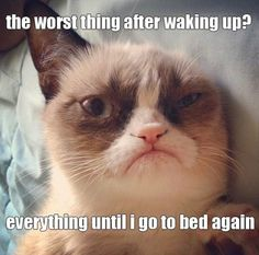 Worst thing after waking up…
