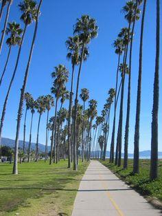 A beautiful day in Santa Barbara's East Beach Copyright: Bb Mvz (malvaez)
