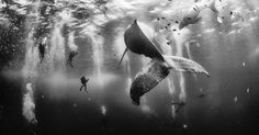The Winners Of The 2015 National Geographic Traveler Photo Contest | Bored Panda