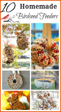 Here are some ideas for homemade birdseed feeders that are probably messy but fun for the whole family to make!