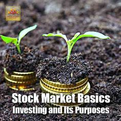 For an investor, it's intrinsic that he has a purpose in mind even before he puts the first penny at risk in the market. Know what the investor is expecting from the market as far as his investments are concerned.