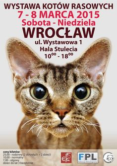 7-8/03 FIFe INT CAT SHOW WROCLAW - 7/8 MARCH 2015 - WYSTAWA MIĘDZYNARODOWA KOTÓW @ Hala Stulecia #cat #kitty