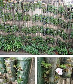 DIY Vasos de garrafa pet para seus cactos, suculentas e outras plantinhas.