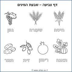 Tu b'Shvat Hebrew Coloring Page