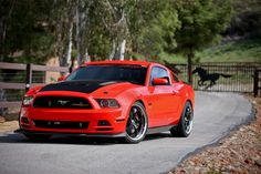 Mickey Thompson's SEMA Mustang 5.0