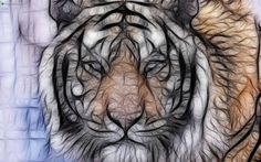 Tiger fractal 3d and cg abstract background wallpapers on d digital colorful abstract wallpapers elsoar altavistaventures Choice Image