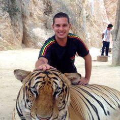 Tiger temple in Tailandia