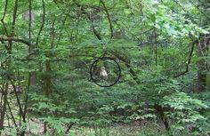 Ghost pictures from Yorktown, Virginia Spirit Magic, Spirit Ghost, Scary Ghost Pictures, Ghost Photos, Real Haunted Houses, Haunted Places, Ghost Orbs, Virgina Beach, Yorktown Virginia