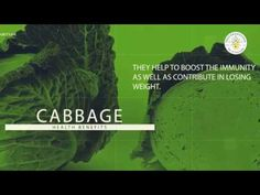 Cabbages are be very helpful in losing weight if taken in right quantities Cabbages: Rich in vitamin C, cabbages are a great source of antioxidants. They hel. Cabbage Health Benefits, Cabbages, Health Care, Lose Weight, Wellness, Learning, Studying, Teaching, Cabbage