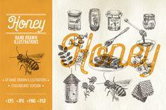 Hand drawn honey illustrations by Natalya Levish on @creativemarket