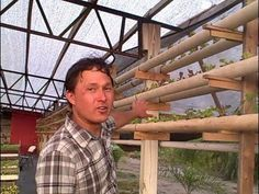 Vertical Hydroponic DIY System uses a Single Nutrient for Amazing Results - YouTube