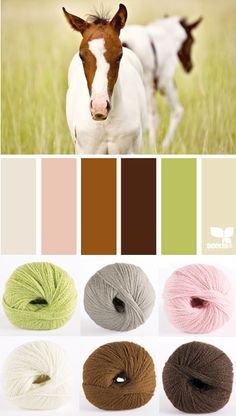 horse hues from design-seeds Design Seeds, Yarn Color Combinations, Colour Schemes, Color Patterns, Colour Pallette, Color Palate, Colour Board, Color Swatches, Color Theory
