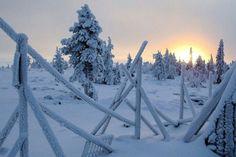 Laponie Gaia, Serenity, Recherche Google, Outdoor, Beauty, Landscapes, Winter, Noel, Outdoors