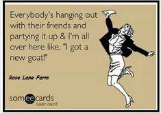 ❤️ goats.